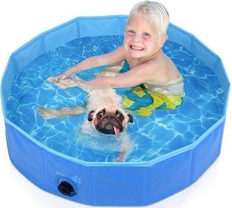 baignoire pour chien