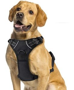 Harnais r/éfl/échissant anti-traction avec poign/ée et 2 attaches pour laisse Harnais Mokcci Truelove pour chien
