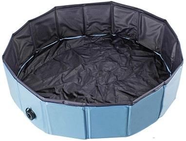 piscine pour grand chien