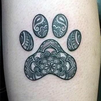marque patte de chien