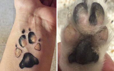 Comment imprimer la patte d'un chien dans un tatouage ?